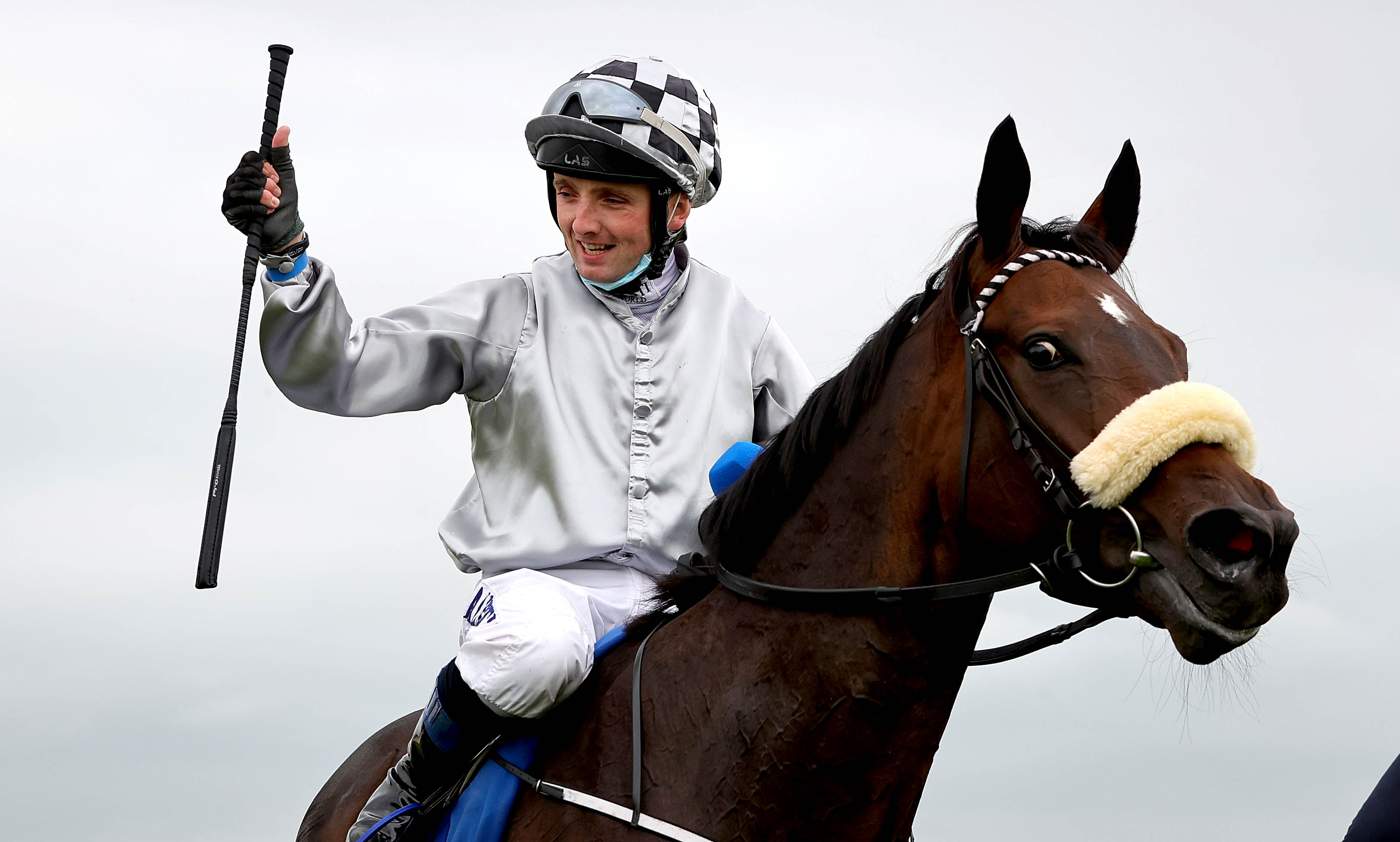 Strong entries for William Hill Autumn Festival