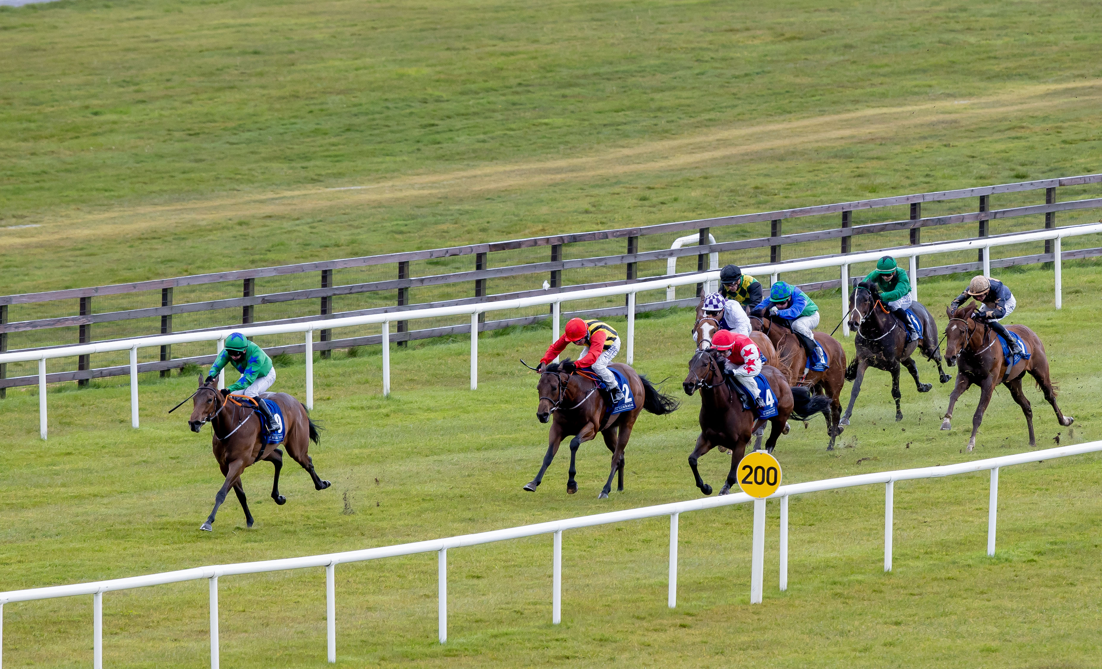 Quick Suzy added to the entries for the Keeneland Phoenix Stakes