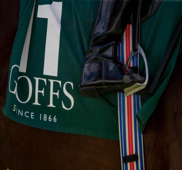 EUROPE'S RICHEST TWO-YEAR-OLD RACE ONLY FOR GOFFS ORBY YEARLINGS