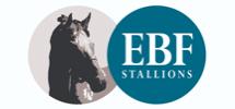 EBF Stallions