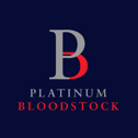 platinum bloodstock